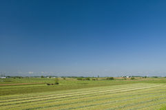 Amish Farm Landscape Stock Photography