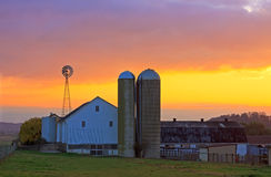 Amish Farm at Sunrise Stock Image