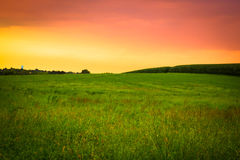 Amish Farm sunset. Beautiful Amish farm field with grass and corn at sunset, Lancaster Pennsylvania royalty free stock image