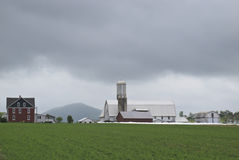 Amish farms Stock Images