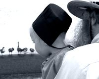 Amish family. A simple moment when a man and little girl stop to watch the geese Royalty Free Stock Images