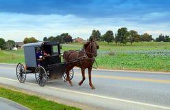 Amish folk i häst och barnvagn Fotografering för Bildbyråer