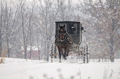Amish häst och barnvagn, snö, storm Arkivbilder