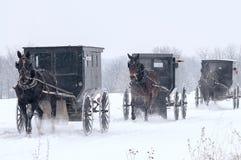 Amish häst och barnvagn, snö, storm Royaltyfria Bilder