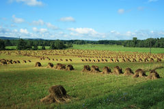 Amish Hay Stacks Royalty Free Stock Photos