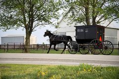 Amish horse and buggy, Royalty Free Stock Photo