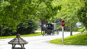 Amish Horse and Buggy going down the Road royalty free stock photo