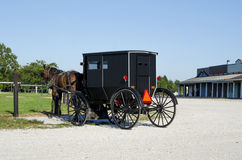 Amish horse and buggy parked Stock Photography