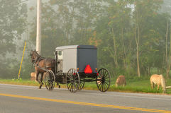 Amish horse and buggy on the road royalty free stock photos