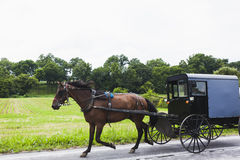 Amish horse and carriage. Horse and carriage in Amish Country, Pennsylvania Stock Photo