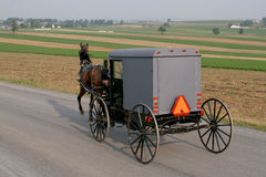 Amish Horse and Carriage Royalty Free Stock Image