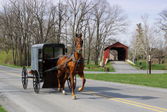Amish Horse and Carriage. An Amish horse and carriage travels on a rural road in Lancaster County,Pennsylvania Stock Photo