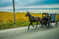 An Amish horse and carriage travels on a rural road in Lancaster County,Pennsylvania.  Royalty Free Stock Image
