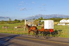 An Amish Horse and Carriage Travels on a Rural Road Stock Photos
