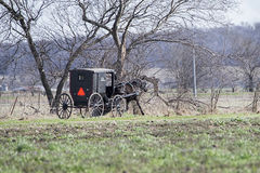 Amish horse drawn black buggy spoked,wheels,country side,farmlan Stock Images