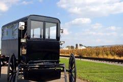 Amish Horse-drawn Buggy Stock Photos