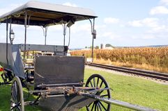 Amish horse-drawn buggy Royalty Free Stock Photos