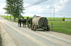 Amish horse drawn tank on road. Stock Image
