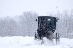 Amish koń i powozik, śnieg, burza obraz royalty free