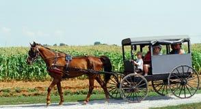 Amish kraj, Lancaster, Pa Obrazy Royalty Free