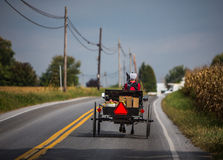 Amish kvinnor i vagn royaltyfria bilder
