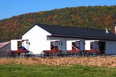 Amish ladugård med barnvagnar som tillsammans med parkeras Royaltyfri Fotografi