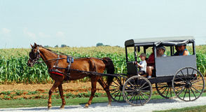 Amish land, Lancaster, PA Royaltyfria Bilder