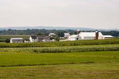Amish lantgård på Sunny Day 3 royaltyfri bild