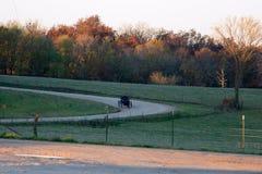 amish morgon royaltyfri bild