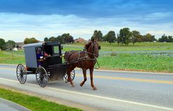 Amish People in Horse and Buggy Stock Image