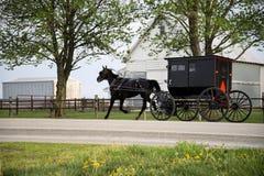 Amish powozik i koń, Zdjęcie Royalty Free