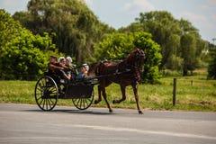 Amish que conduzem o carrinho do cavalo da Dois-roda foto de stock