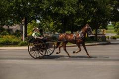 Amish que usam o carrinho da Dois-roda fotografia de stock