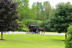 Amish. Riding a horse and buggy in rural Constable, New York Royalty Free Stock Photo