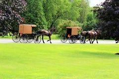 Amish Stock Photos