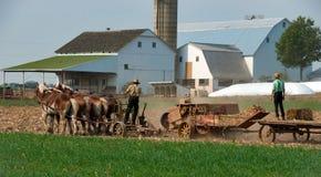 Amish rolnicy pracuje pola obraz stock
