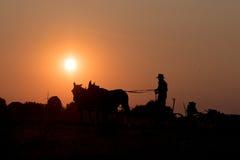 Amish tout en cultivant avec des chevaux au coucher du soleil Photographie stock