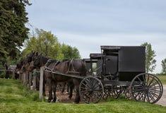 Amish transport zdjęcie royalty free