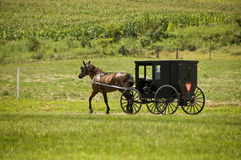 Amish Travel. An Amish horse and buggy on a country road stock photography