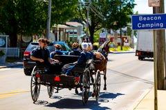 Amish ungdom ut för en ritt Royaltyfri Fotografi