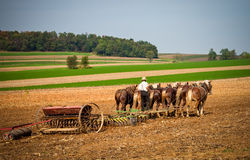 Amish working Royalty Free Stock Image