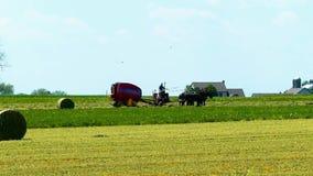 Amishbedrijfsmedewerker die de Gebieden met oud en Nieuw Materiaal oogsten stock videobeelden