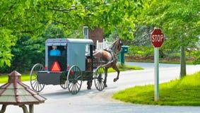 Amishpaard en gaan het Met fouten onderaan de Weg stock foto's