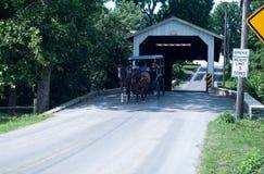 Amishwagen royalty-vrije stock foto