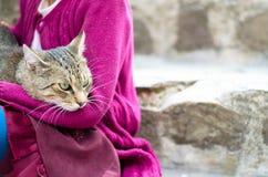 Amistad de la muchacha y del gato Fotos de archivo libres de regalías