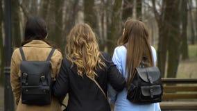 Amistad de ni?a Tres muchachas hermosas jovenes est?n caminando en el parque de la ciudad Son feliz Las muchachas son felices de  almacen de video