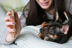 Amistad fuerte con el pequeño perro foto de archivo