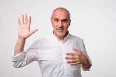 Amistoso-mirada del hombre europeo atractivo que renuncia la mano en hola gesto mientras que sonríe alegre foto de archivo libre de regalías