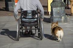 Amitié d'homme et de chien Photo libre de droits