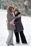 Amitié en hiver Image libre de droits